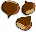 Kastanien, Conker, Marron, Nüsse, Samen