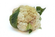 Kohl, Farbe, White, Lecker, Gemüse